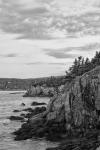 Fundy-16
