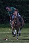 horseblog-10