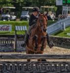 horseblog-3