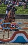 horseblog-4